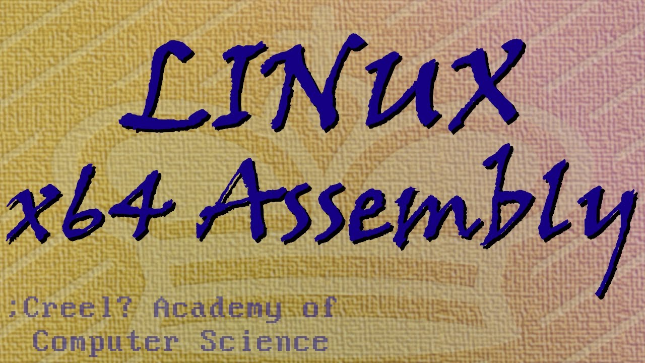 Linux x64 Assembly Tutorial 4: Passing Parameters and Coding
