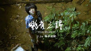 《野雀之詩》台灣版正式預告 7.24 如夢初醒