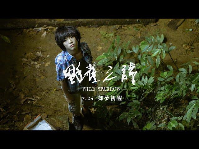 《野雀之詩》台灣版正式預告|7.24 如夢初醒