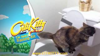 Best Cat Toilet Training Product - CitiKitty
