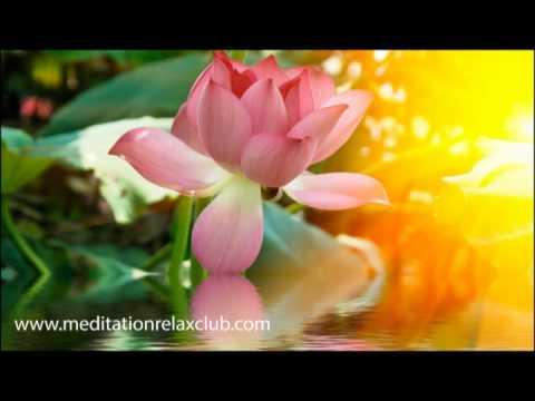 1-stunde-entspannung:-meditationsmusik-und-entspannungsmusik,-spa-musik-zum-entspannen