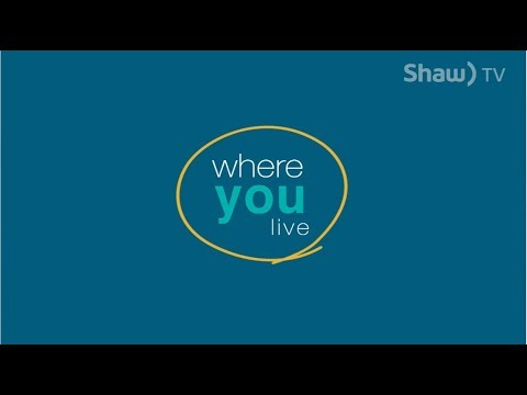 Where You Live: Amazing Space Studio, Wells BC