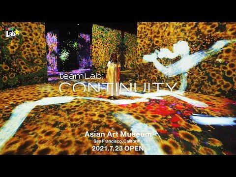 teamLab: Continuity