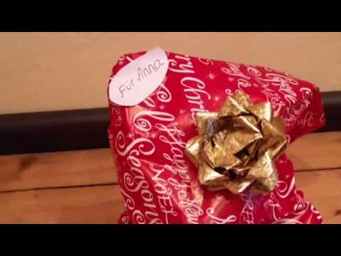 Bonny Bolonka rettet Weihnachten / Dog-Tricks X-Mas