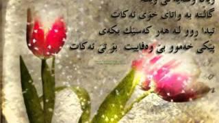 gorani kurdi Zyad assad Ka dat zani.flv