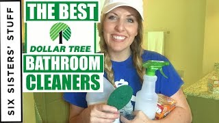 How to Clean Your Bathroom With Dollar Tree Cleaning Supplies! Clean With Me!