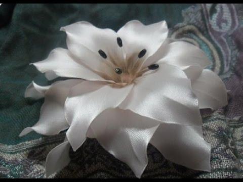 Эрика Erica вереск, растение, цветы Фото Уход