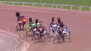 Vidéo de la course PMU PRIX DE GRENADE-SUR-GARONNE