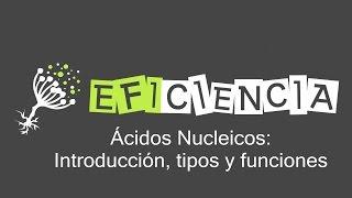 ÁCIDOS NUCLEICOS. Introducción Tipos Funciones