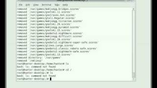 Watching Ubuntu Linux Eat Itself with One Command (rm -rf /)