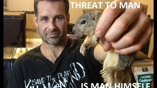 RAISING A BABY SQUIRREL WITH GARY ON THE GOLDING STATE