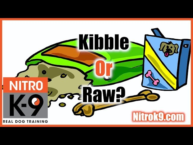 Is raw better than kibble? (podcast)