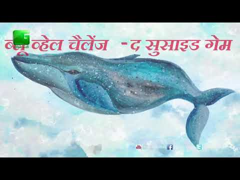 Blue Whale Challenge(The Suicide Game)  is now ban in India