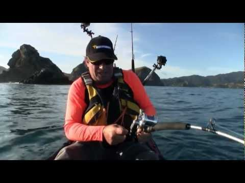 How To Catch Kingfish Jigging From A Kayak