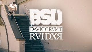 BSD BMX - David Grant - RAIDER