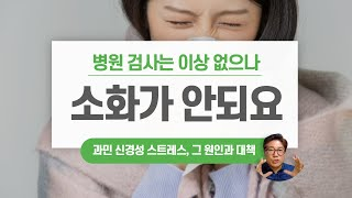 비타민 신경성 스트레스 소화기 심신미약 닥터한스TV_비…