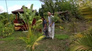 บ้านเมียฝรั่งโลโซ อ.โคกสูง โคราช