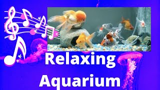 Beautiful Relaxing Aquarium Music for Sleep Study Yoga & Meditation Screensaver (Official Video)
