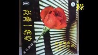 電星樂隊   Telstar Combo  -   你像一朵花 , 我爱晚霞