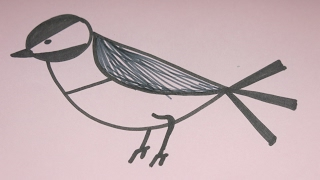 How to Draw a  Nightingale: Simple Drawing Tutorial for Kids
