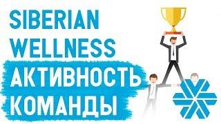 Siberian Wellness УРОКИ. Как проверить активность команды в Сибирском здоровье  Команда в МЛМ