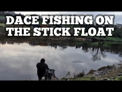Dace Fishing On The Stick Float River Ribble