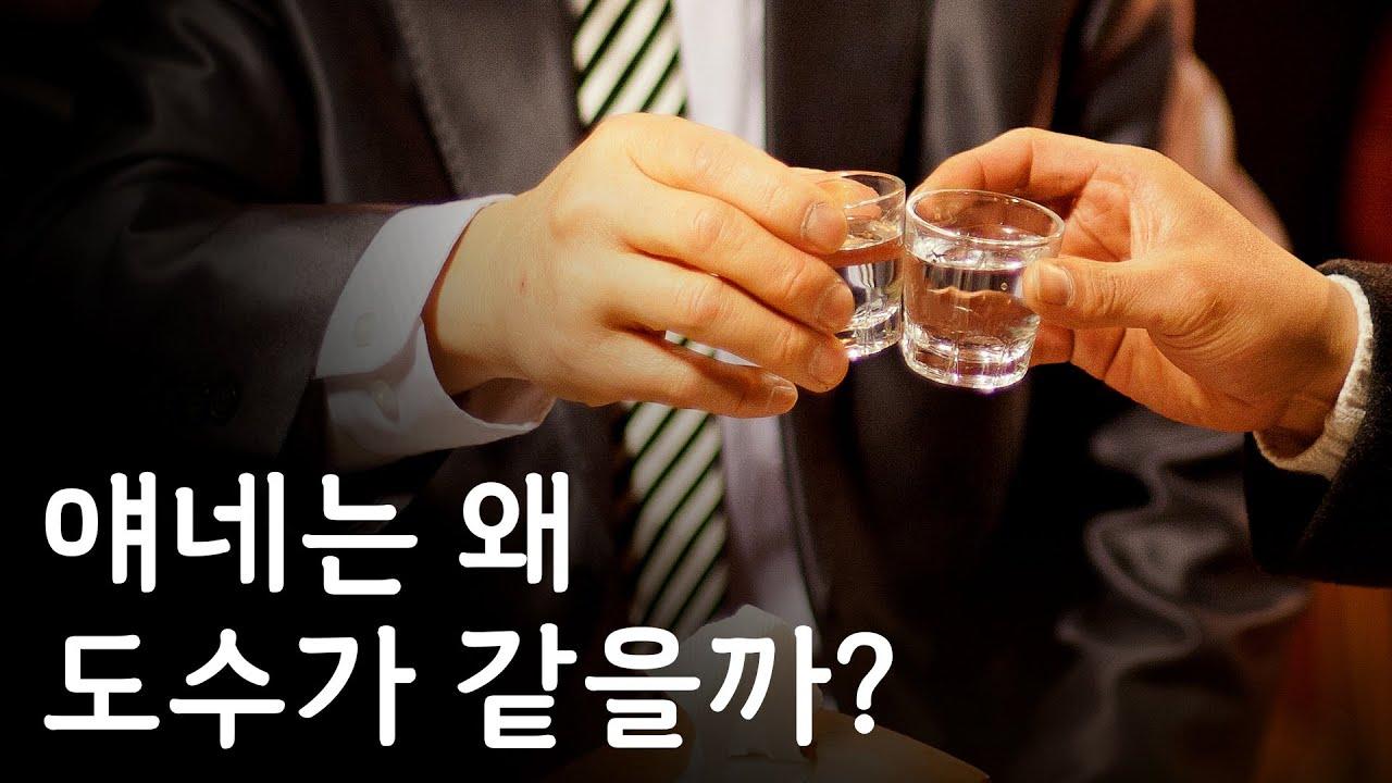 증류식 소주 '화요'와 '일품진로'가 모두 25도인 이유