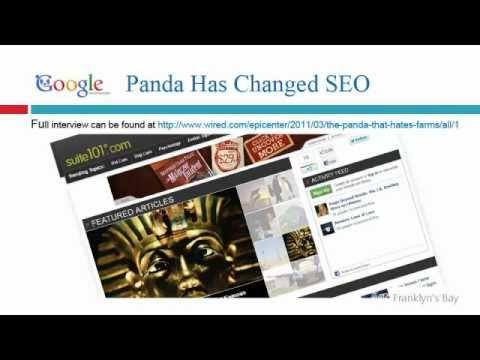 google-panda-algorithm-trying-to-break-it-down-for-seo-orlando-florida,-los-angeles-california