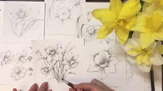 Let's draw #66 Spring Flower s…