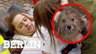Hund angefahren: Warum ist die Tochter schwer verletzt? | Auf Streife - Berlin | SAT.1 TV