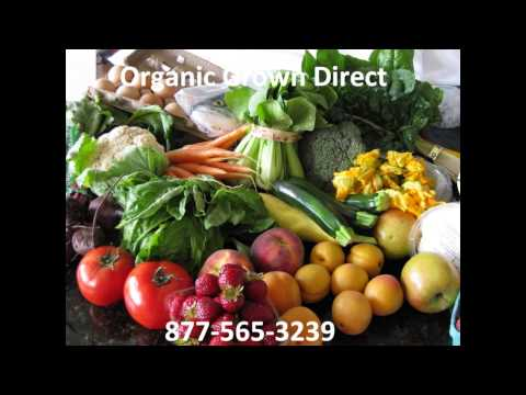 Organic Grown Food