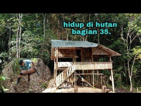 Activity Harian Anak Desa.membersihkan Lahan Perkebunan Dapat Kura Kura Dan Masak Hasil Bubu