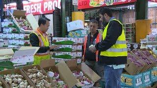 Nông nghiệp chuyển động: Xuất khẩu rau quả - Những tín hiệu tích cực