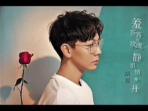胡夏 Hu Xia〈羞答答的玫瑰靜悄悄地開〉