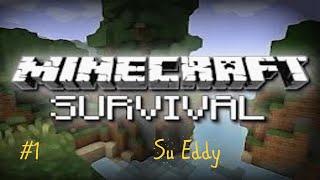 Minecraft:Islikimas #1-Jau statom Nama!!
