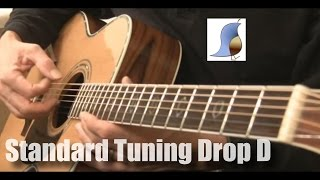 standard tuning (regular) - drop d