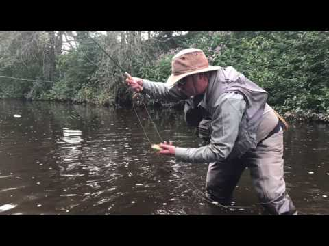 Dry fly on small streams
