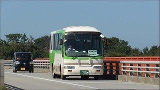 フィーダーバスとして運行中の富山地鉄バス(一般路線のカラー/いわゆる都バスもどき)