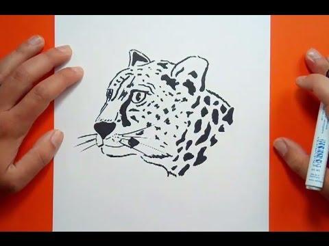 Como dibujar un leopardo paso a paso | How to draw a leopard - YouTube