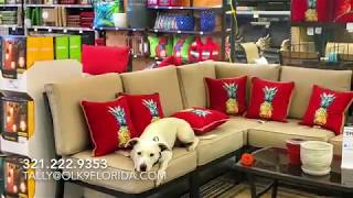 "4 Year Old Pit Mix ""Lexie"" 