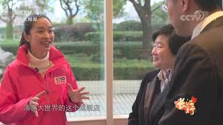 [远方的家]长江行(100) 艺术生活 近在身边| CCTV中文国际