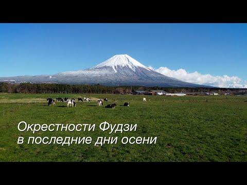 Окрестности священной горы