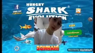 hungry shark evolution da nasıl hile yapılır