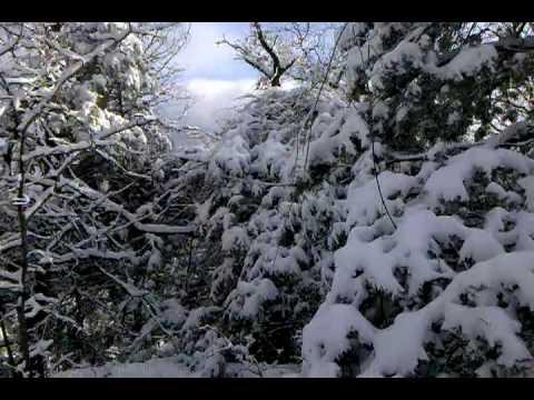Snow video-2010-01-30-16-05-23