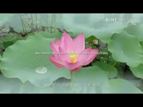 Lirik & Terjemahan Lagu Mandarin - Wo Ai Ni Sheng Guo Ni Ai Wo