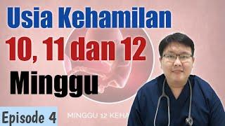 USIA KEHAMILAN 10,11,DAN 12 MINGGU (eps 4) - TANYAKAN DOKTER