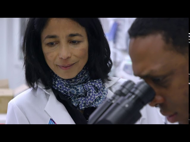 The PhD in Biomedical Sciences Program