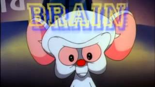 Pinky and the Brain intro (Original Instrumental)