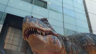 The Dinosaur Show