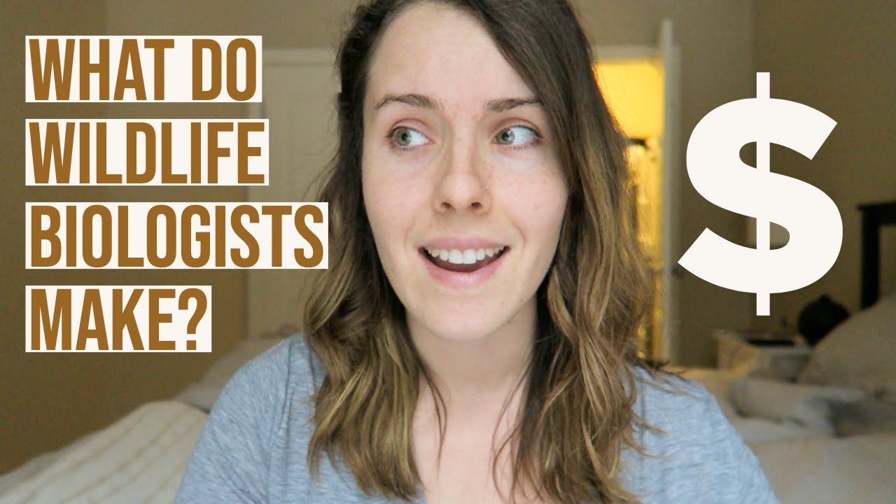 How Much Money Do I Make With A Wildlife Biology Degree Honest Youtube